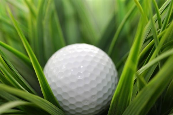 Bóng golf 1 lớp