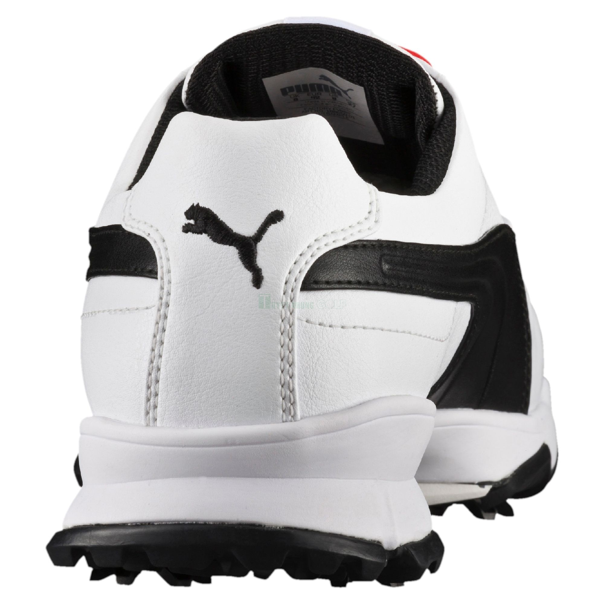 Giầy golf nam Puma ACE