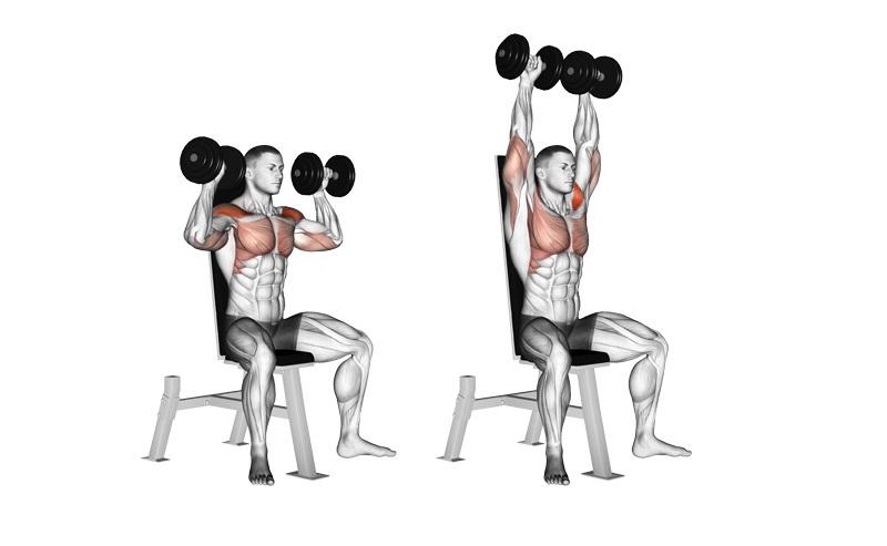 Ngăn ngừa đau cơ bắp