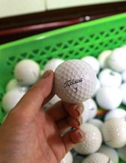bóng golf cũ Titleist Pro V1