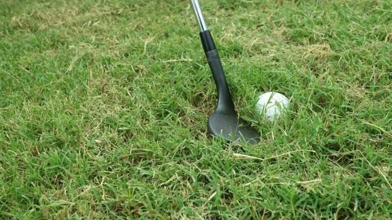 Cứu bóng golf phải vùng cỏ giày