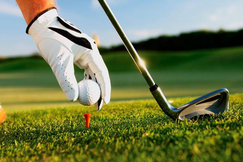 Gậy sắt dài được dùng để thực hiện những cú đánh bóng gần khu vực green