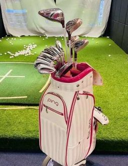 full set ping gle2 lady