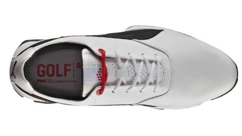 Giày golf nam ACE