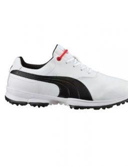 giày puma golf nam