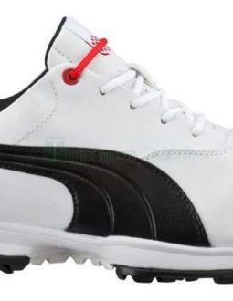 Giầy golf nam Puma ACE