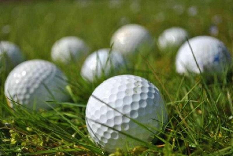 Những đối tượng mới tập golf nên sử dụng