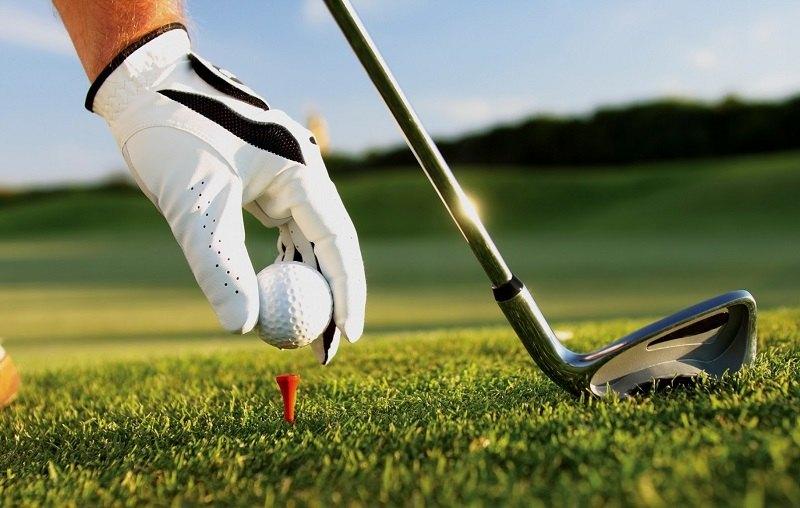 Gậy fairway là một tên gọi khác của cây gậy gỗ trong bộ môn golf.