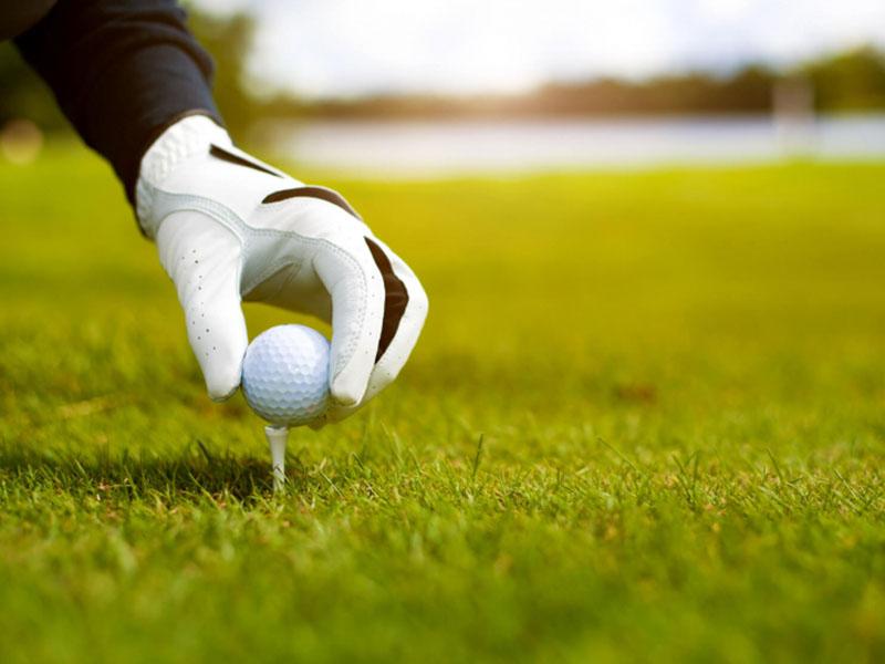 Tee golf làm bằng nhựa được nhiều người ưa chuộng hơn cả nhờ tính bền bỉ