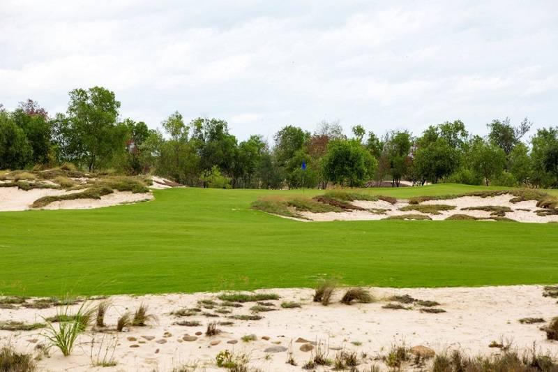 Một góc cồn cát và thảm cỏ