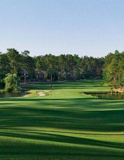 Sân golf Đà Lạt Palace luôn thu hút đông đảo người chơi tới trải nghiệm