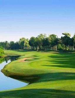 sân golf thái bình