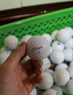 Bóng golf Titleist Pro V1 Cũ Chất Lượng, Giá Tốt